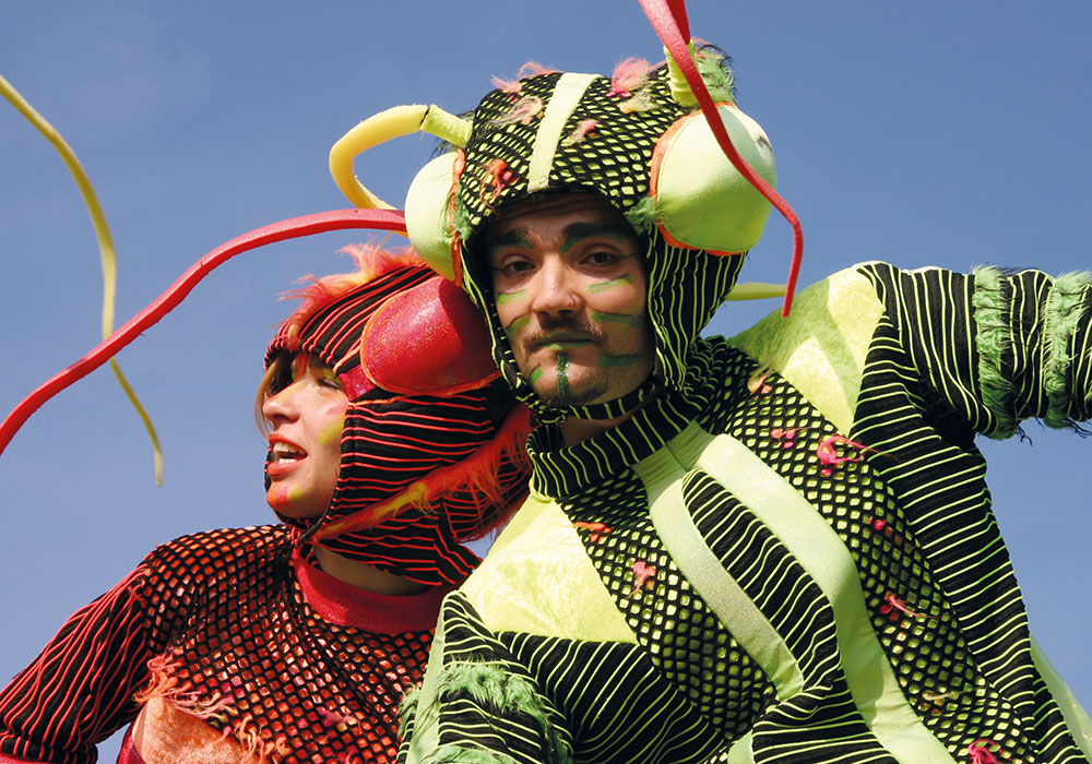 zebra-grasshoppers_portrait_500x350px@2x